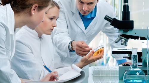 Innovazione e ricerca: la Proteina Tau
